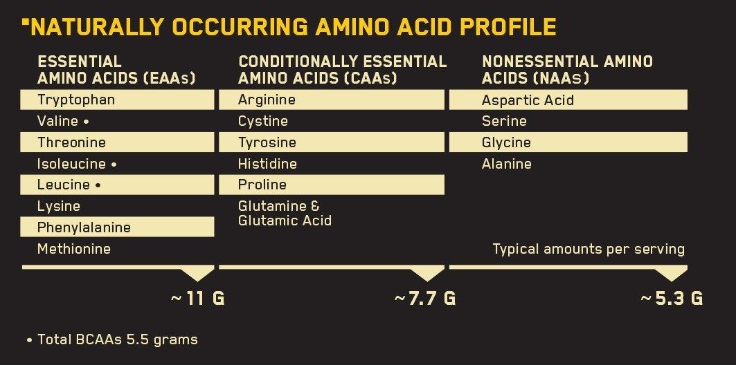 Optimum Nutrition (ON) Gold Standard 100% Whey Protein Powder - 2 Lbs / 907gm-165976