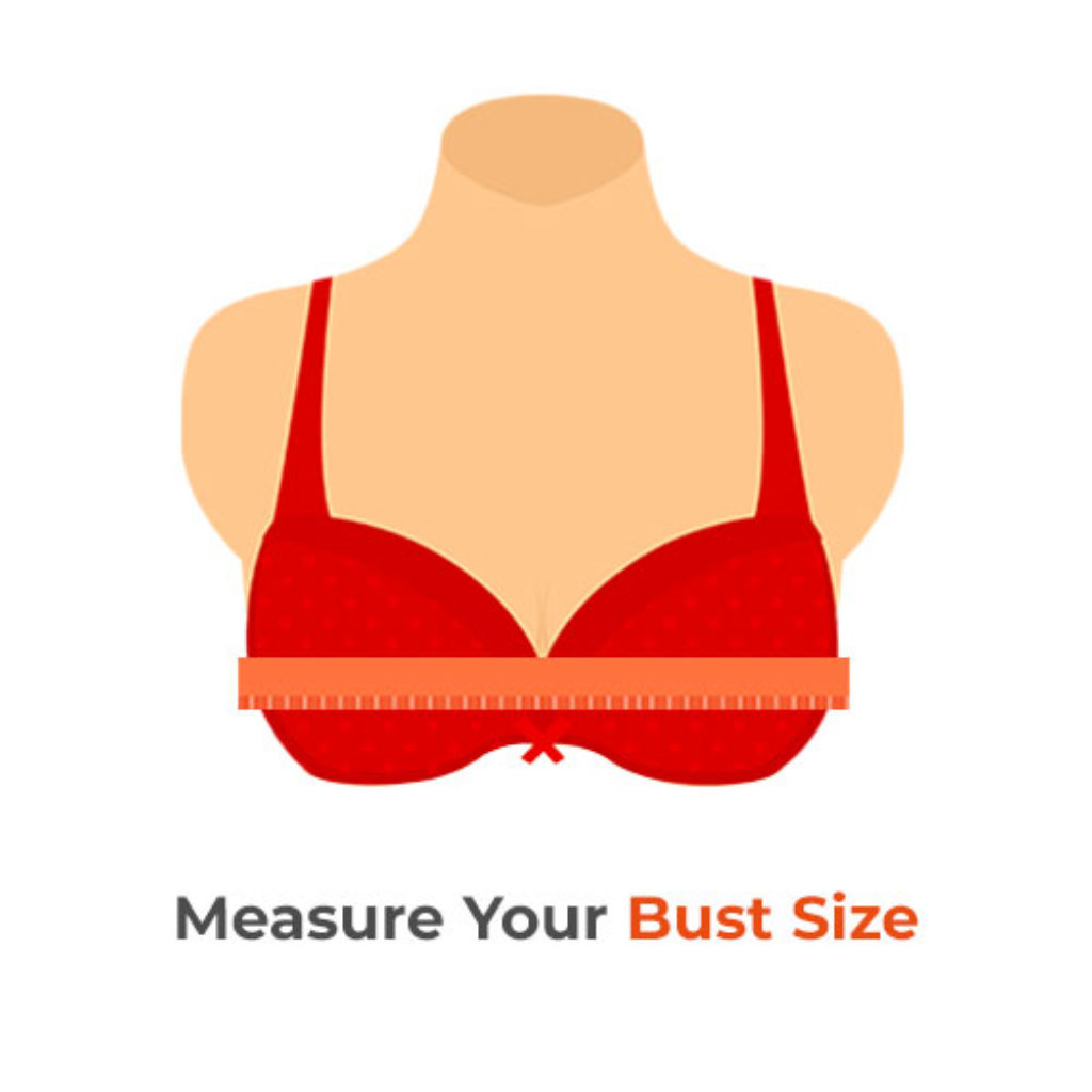 bust size